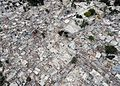 The earthquake damage in Port-au-Prince, Haiti, is photographed Jan. 30, 2010, during Operation Unified Response 100201-N-HX866-003.jpg