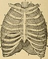 The essentials of health. A text-book of anatomy, physiology, hygiene, alcohol, and narcotics (1892) (14592733888).jpg