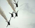 Thunderbirds in Bulgaria 110625-F-KA253-091.jpg