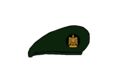 Thunderbolt Beret - Egyptian Army.png