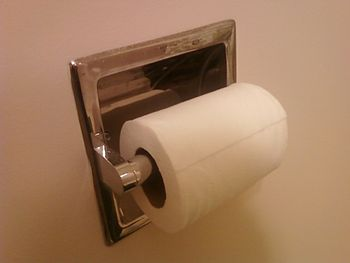 A roll of toilet paper attached to the wall of...