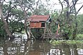 Tonle Sap Lake (9728624081).jpg