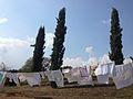Toscana - panoramio (4).jpg