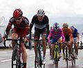 Tour de France 2011, col de manse, evans franck schleck cunego sanchez (14683477987).jpg