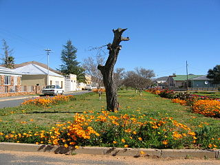 Touws River (town) Place in Western Cape, South Africa
