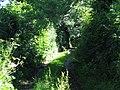 Track near Blakes Farm - geograph.org.uk - 498359.jpg