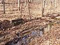 Trail 2 PB250225.jpg
