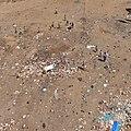 Trash KAP (5502442928).jpg