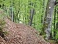 Traufgänge Zuwegung - panoramio.jpg