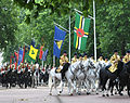 Trooping the Colour 2011 04.jpg