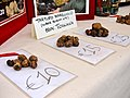 Truffes de Toscane, Tuber borchii vitt. ou Tuber Albidum Pico, dite truffe blanche de Mars.jpg