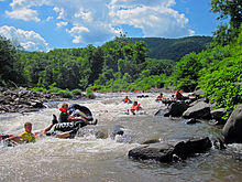 People in inner tubes wearing lifejackets in a whitewater stream, with a wooded mountain in the background, just above a small drop over a rock