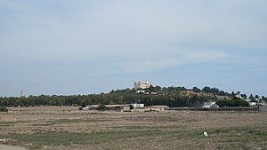 Circus of Carthage - Location of the Circus of Carthage, with the Byrsa hill in the background.