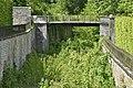 Végétation sauvage dans le fossé (29382551383).jpg
