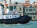 VE8608 Squalus Venice.JPG