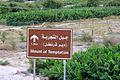 Valle del Giordano (6238286931) (2).jpg