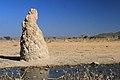 Velké termitiště na cestě do Sesfonteinu - panoramio.jpg