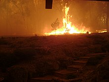 Black Saturday bushfires - Wikipedia