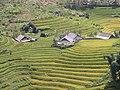Vietnam Sapa 1.jpeg