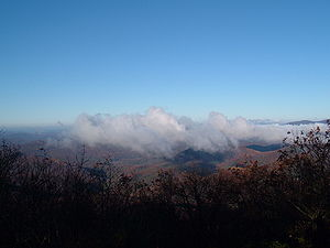 View from Springer Mountain.jpg