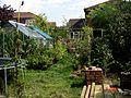 View from a hammock - Flickr - peganum.jpg