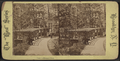 View in Prospect Park, from Robert N. Dennis collection of stereoscopic views 11.png