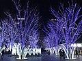 View in front of Hakata Entrance of Hakata Station at night 20181223-1.jpg