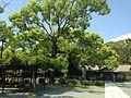 View of pergola and Chokushikan Hall of Munakata Grand Shrine (Hetsu Shrine).JPG