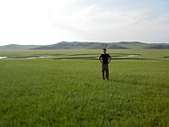 Vincent in grasslands.jpg