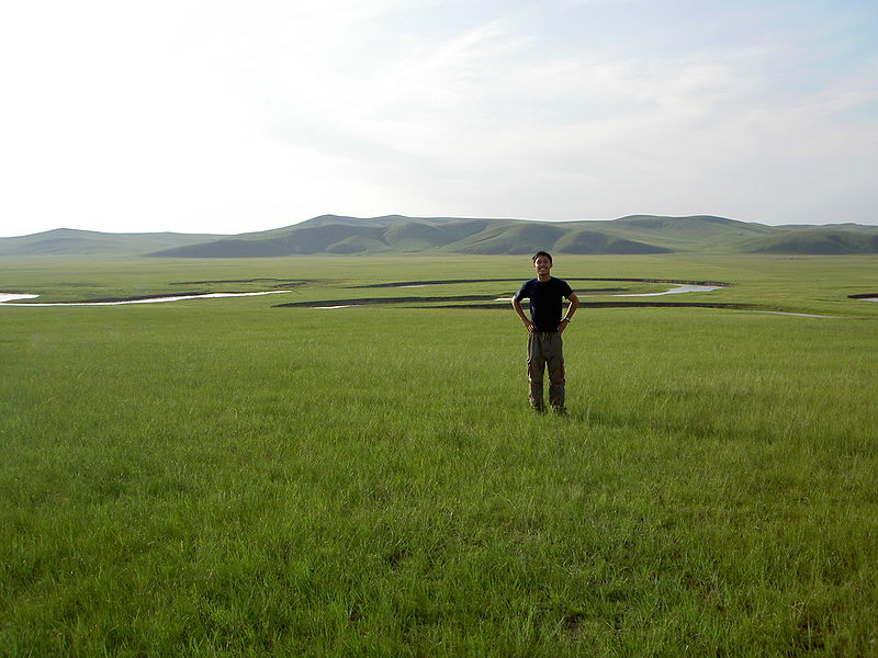 ファイル:Vincent in grasslands.jpg