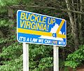 Virginia seatbelt.JPG