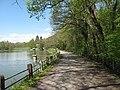 Vyžlovský rybník (010).jpg