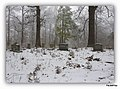 WHITE HOUSE GREENWAY, WHITE HOUSE, TN - panoramio (5).jpg