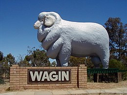 Un ariete gigante all'ingresso di Wagin