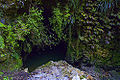 Waitomo Cave Entrance n.jpg