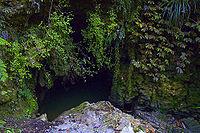 Waitomo Cave Entrance n