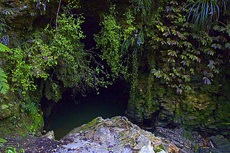 Waitomo District - A cave entrance in the Waitomo District which is known for its limestone caves.