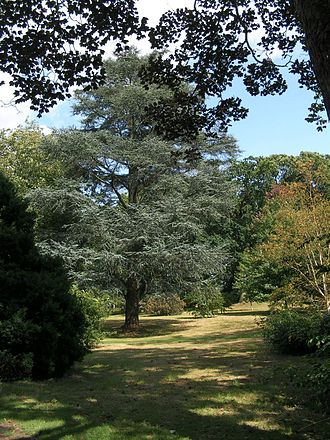 West Sussex - Wakehurst Place Gardens, Ardingly