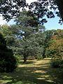 Wakehurst Place gardens1.jpg
