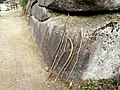 Walking sticks, Mount Misen - DSC02131.JPG