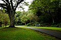 Walkway to Waimea Falls (5217035302).jpg