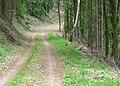Wanderweg bei Weyher in der Pfalz.jpg