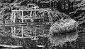 Waterloopbos. Onderzoek vormgeving van de nieuwe havenmond in IJmuiden M526 05.jpg