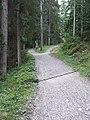 Weggabelung am Weg zum Eibsee - geo.hlipp.de - 15732.jpg