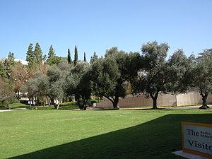 Weizmann Institute of Science7.JPG
