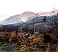 West Highland Way 2005.jpg