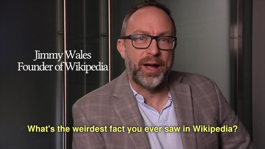 File:What's the weirdest fact you ever saw in Wikipedia?.webm