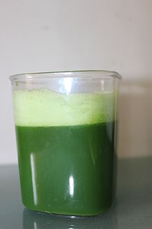 Wheatgrass Wikipedia