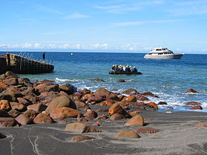 Whakaari / White Island - Visitors approaching the wharf