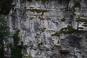 White rocks.jpg